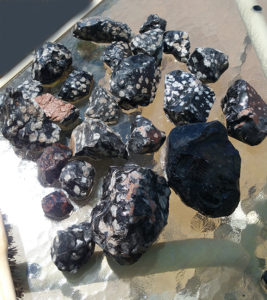Alpine Gems Snowflake Obsidian