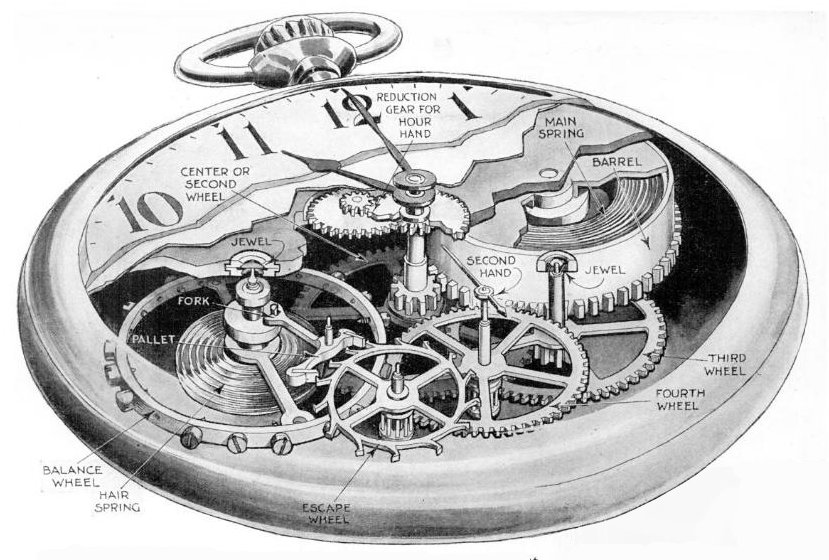 Pocketwatch cutaway drawing